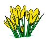 spring-clip-art-spring-flower-clipart